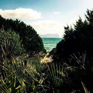 Spiaggia di Porto Ferro